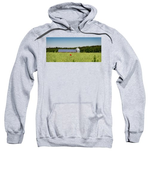 Poppy Flower In A Field And Barn Sweatshirt