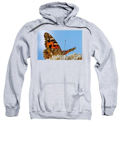 Portrait Of A Butterfly Sweatshirt
