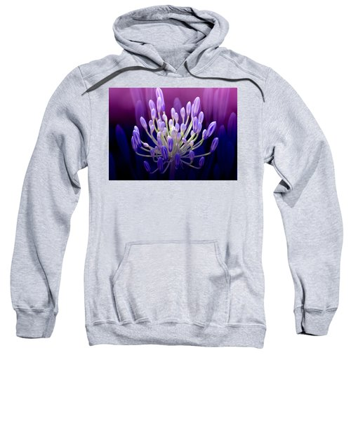 Praise Sweatshirt