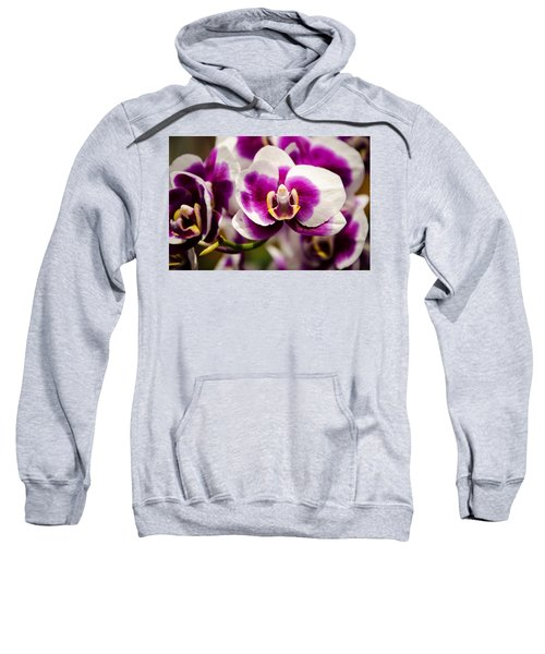 Purple Beauty Sweatshirt