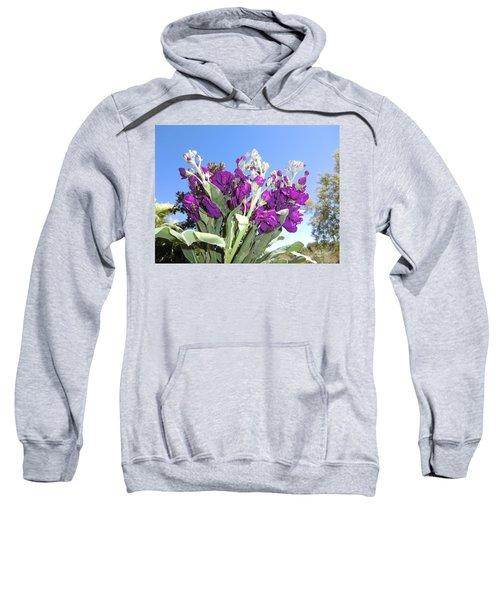 Purple Glow Sweatshirt