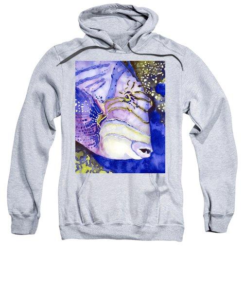 Queen Triggerfish Portrait Sweatshirt