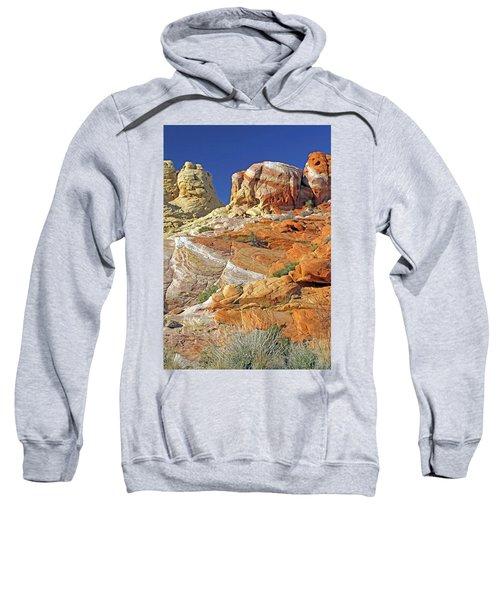 Rainbow Land Sweatshirt