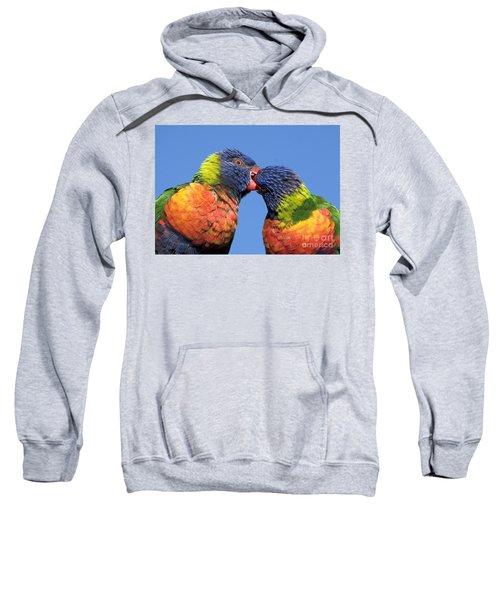Rainbow Lorikeets Sweatshirt