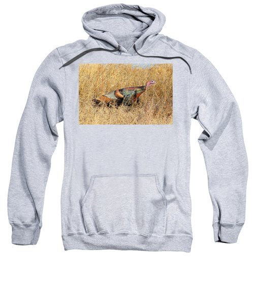 Rainbow Turkey Sweatshirt