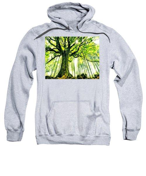 Raised By The Light Sweatshirt