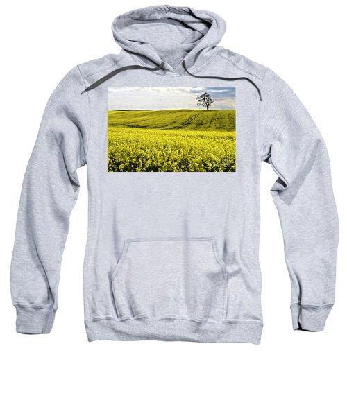 Rape Landscape With Lonely Tree Sweatshirt