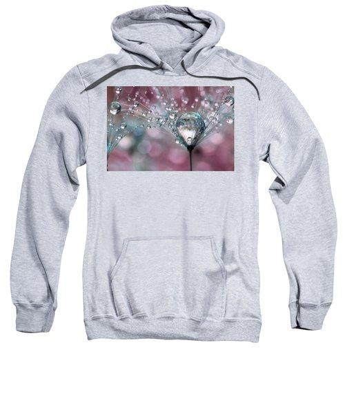 Rasberry Sparkles Sweatshirt