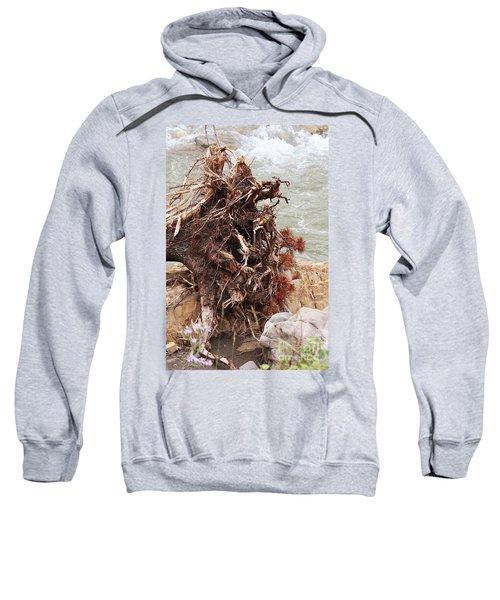 Ravaged Roots Sweatshirt