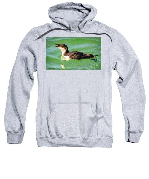 Razorbill In Florida Sweatshirt