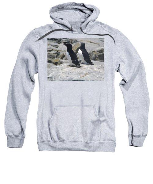 Razorbills 2 Sweatshirt by James Petersen