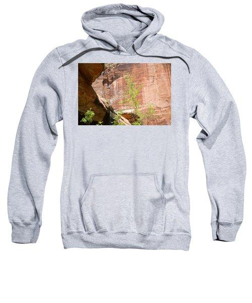 Red Rock With Waterfall Sweatshirt
