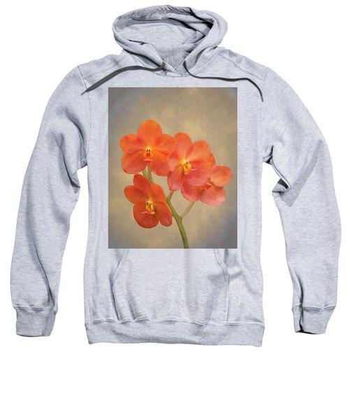 Red Scarlet Orchid On Grunge Sweatshirt