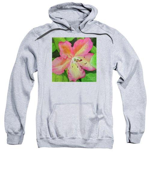 Rhodie With Dew II Sweatshirt
