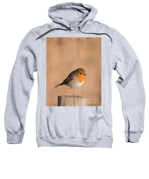Robin Sweatshirt