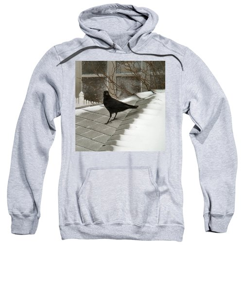 Roof Crow Sweatshirt