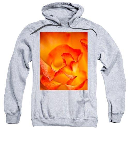 Rose Petals Closeup Sweatshirt