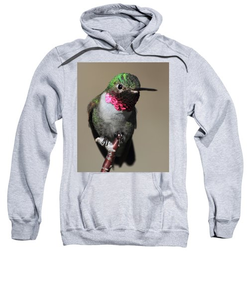 Ruby-throated Hummer Sweatshirt