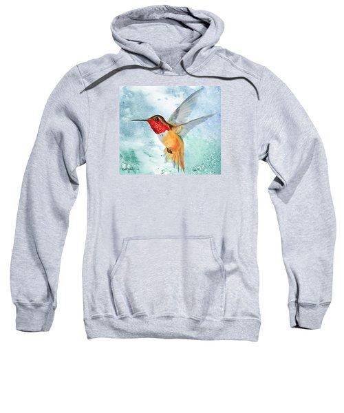 Da199 Rufous Humming Bird By Daniel Adams Sweatshirt