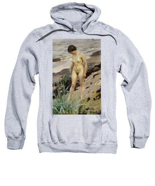 Sandhamn Study Sweatshirt