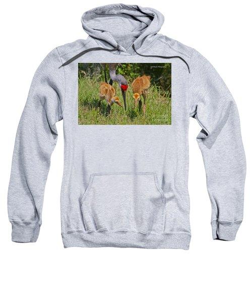 Sandhill Crane Family Feeding Sweatshirt