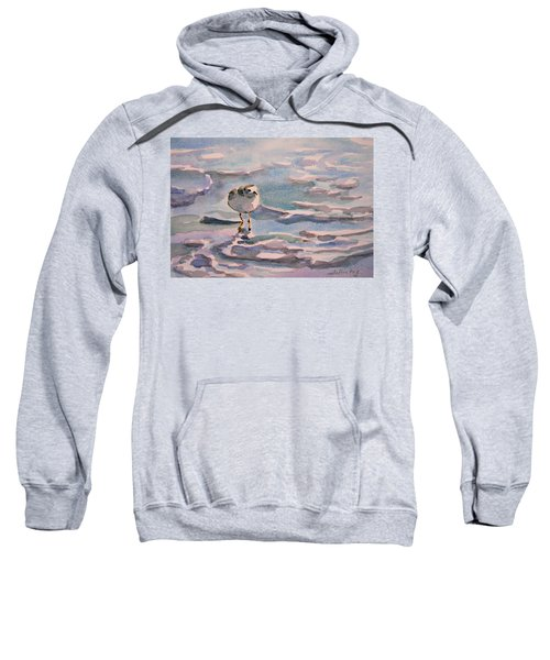 Sandpiper And Seafoam 3-8-15 Sweatshirt
