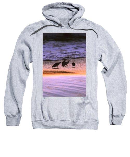 Sandpiper Morning Sweatshirt