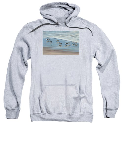 Sandpipers Sweatshirt by Tina Obrien