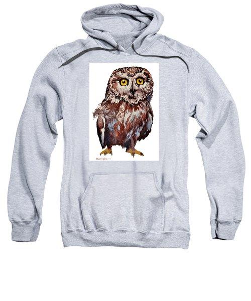 Da148 Saw Whet Owl Daniel Adams Sweatshirt