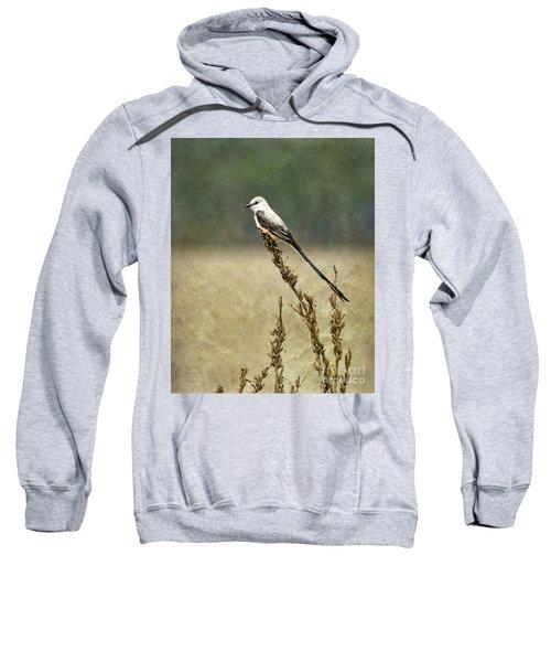 Scissortailed-flycatcher Sweatshirt