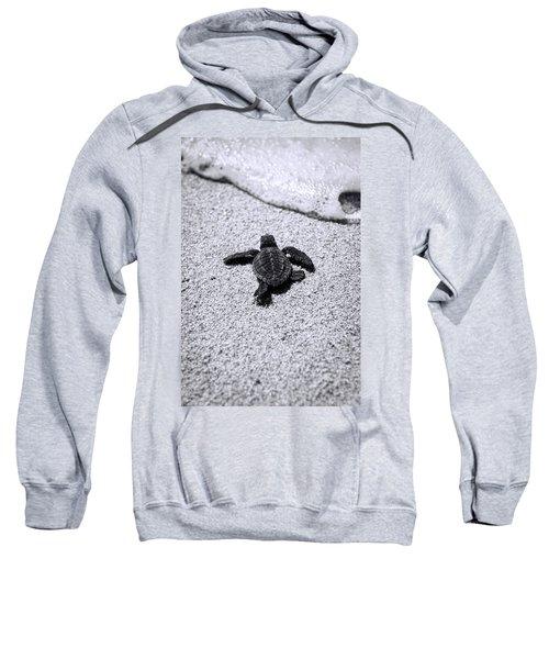 Sea Turtle Sweatshirt by Sebastian Musial