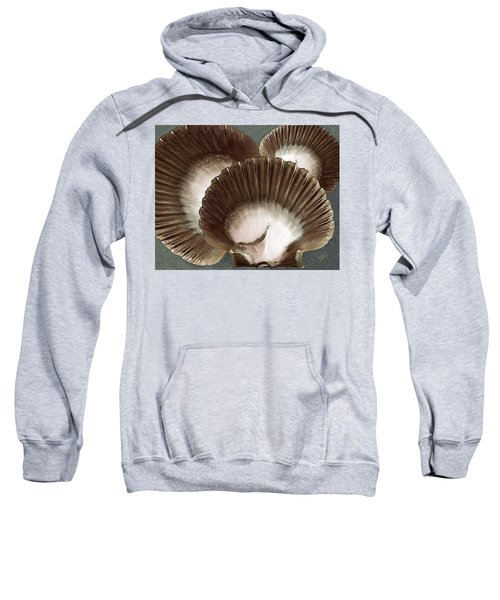Seashells Spectacular No 22 Sweatshirt