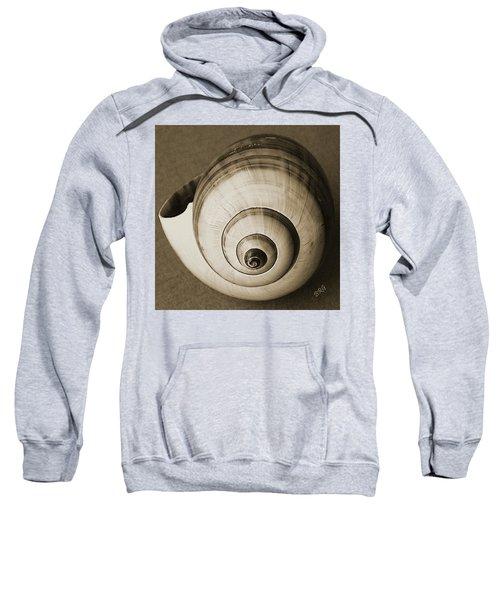 Seashells Spectacular No 25 Sweatshirt