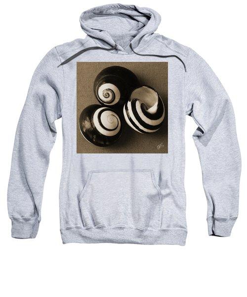 Seashells Spectacular No 27 Sweatshirt