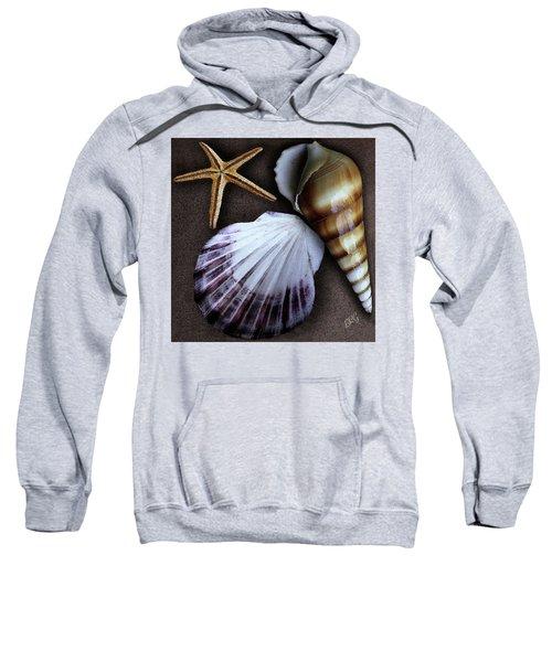 Seashells Spectacular No 37 Sweatshirt