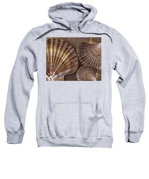 Seashells Spectacular No 7 Sweatshirt
