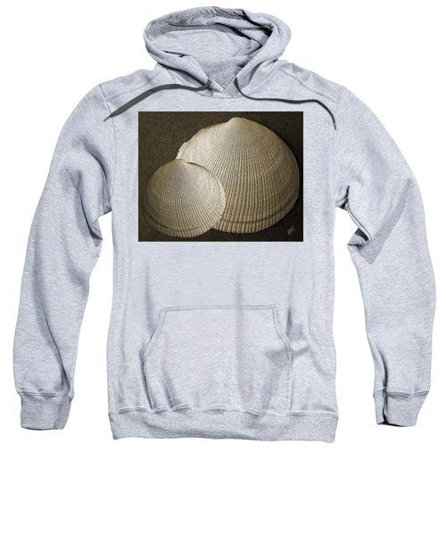 Seashells Spectacular No 8 Sweatshirt