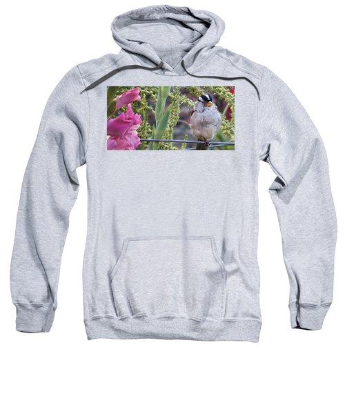 Seattle Bird Sweatshirt