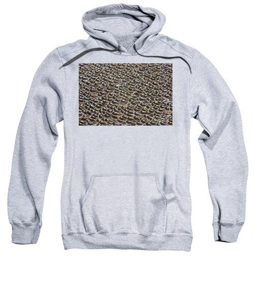 Semipalmated Sandpipers Sleeping Sweatshirt by Yva Momatiuk John Eastcott