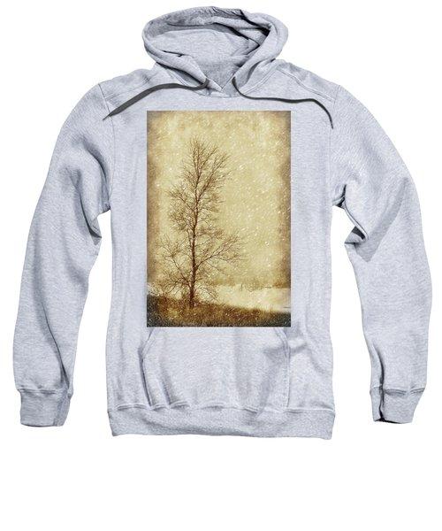 Sentinel Tree In Winter Sweatshirt