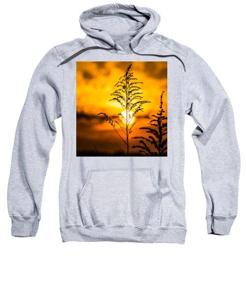 Setting Sun Sweatshirt