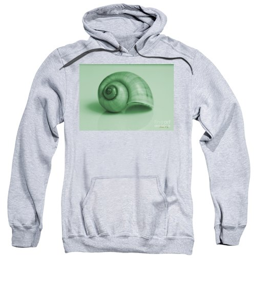 Shell. Light Green Sweatshirt