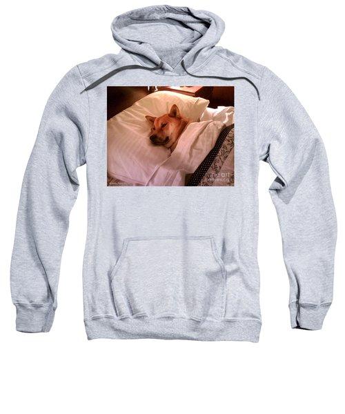 Shiba Inu Kobi-1 Sweatshirt