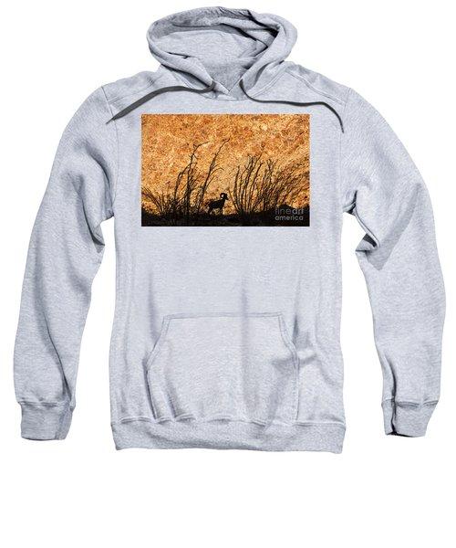 Silhouette Bighorn Sheep Sweatshirt