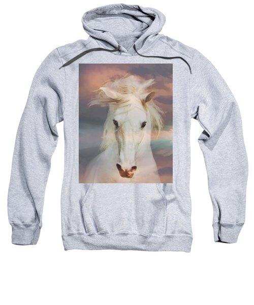 Silver Boy Sweatshirt