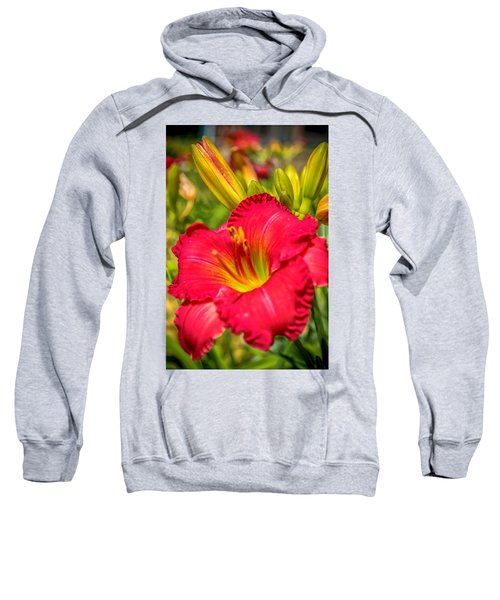 Simple Lily Sweatshirt