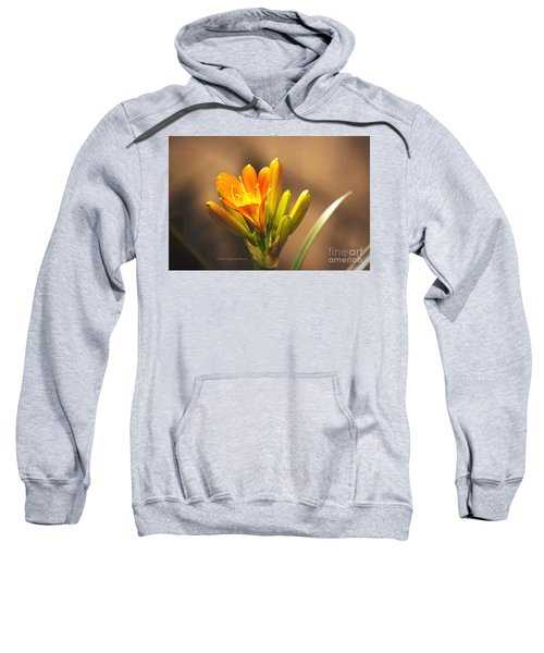 Single Kaffir Lily Bloom Sweatshirt
