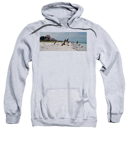 Black Skimmers At Don Cesar Sweatshirt