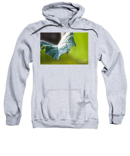 Slice Of Leaf Sweatshirt