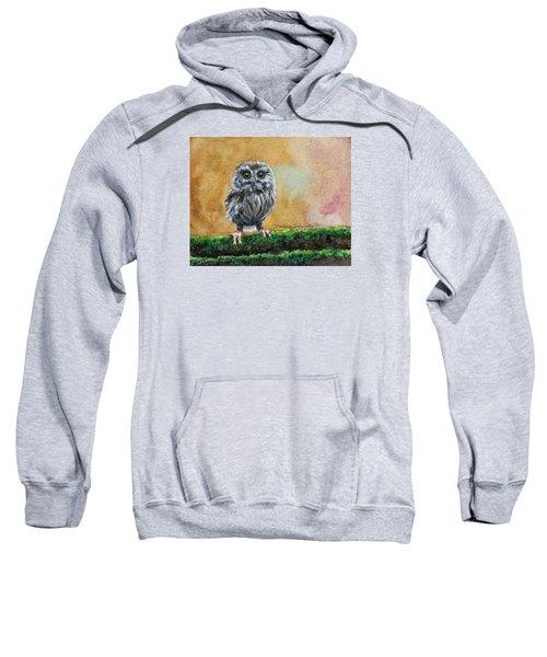 Small Wonder Sweatshirt